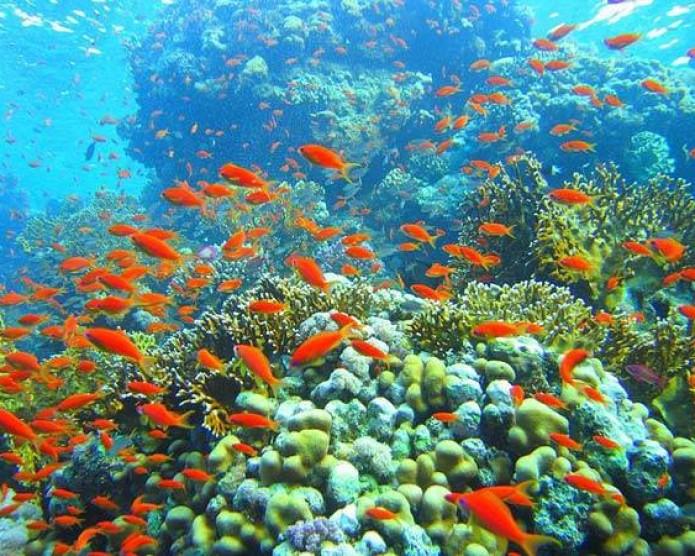 Egipt-Hurghada-2013-Karoltravel-12.jpg