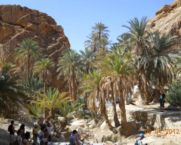 Tunezja-2013-Karoltravel-15.jpg